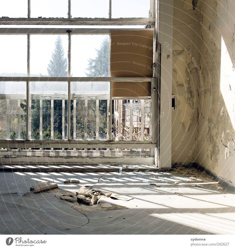 Durchbruch ruhig Einsamkeit Leben Wand Fenster Tod Mauer träumen Raum Zeit ästhetisch Bodenbelag Häusliches Leben Wandel & Veränderung einzigartig