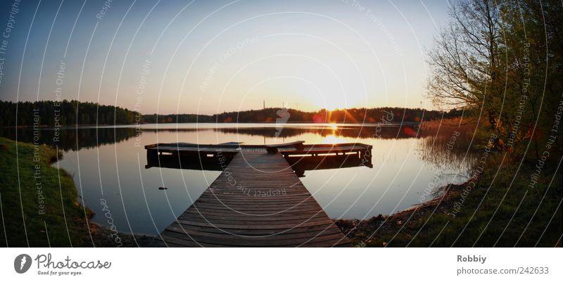 Braunsteich Wasser Sonnenaufgang Sonnenuntergang Seeufer Teich Anlegestelle Romantik Gelassenheit ruhig Erholung Freizeit & Hobby Natur Umwelt Farbfoto