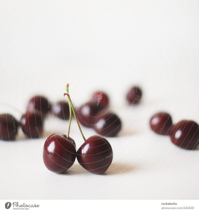kleine zuflucht. rot Sommer Lebensmittel Freundschaft Frucht ästhetisch süß rein genießen Zusammenhalt Kirsche loyal Foodfotografie