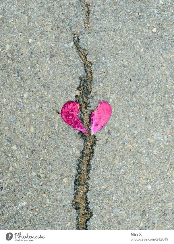 gebrochenes Herz Stein Gefühle Verliebtheit Liebeskummer Trennung Scheidung herzförmig Riss Sorge Traurigkeit rot rosa Blütenblatt Farbfoto Außenaufnahme