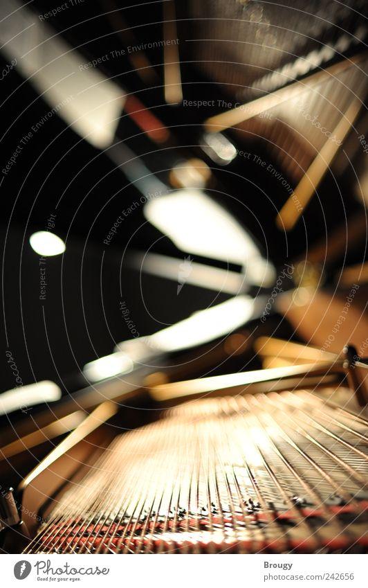 Beleuchteter Flügel von Steinway & Sons bei Konzert am Abend schön Freude schwarz Holz Glück träumen Metall Stimmung Musik Kunst Zeit elegant glänzend gold groß