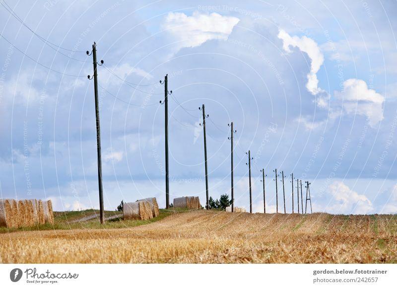 Strommasten I Himmel blau Sommer Wolken gelb Erholung Umwelt Landschaft Feld gold Energie Energiewirtschaft Technik & Technologie Getreide Schönes Wetter Zerstörung