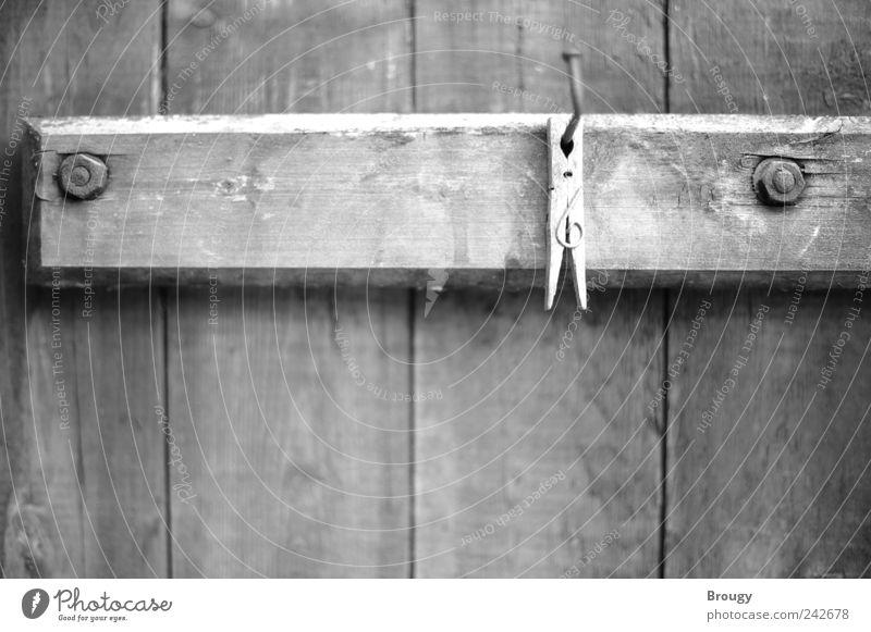 Alte Wäscheklammer an einem Nagel im Holztor weiß schwarz Einsamkeit Erholung Kunst dreckig verrückt ästhetisch einzigartig Frieden außergewöhnlich Neugier