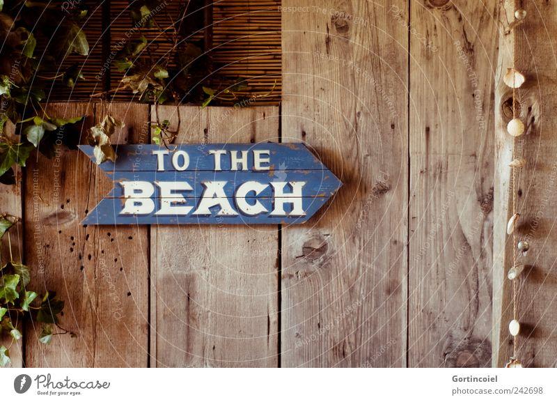 To the beach Holz Schilder & Markierungen retro Schriftzeichen Hinweisschild Muschel Warnschild Holzstruktur Holzschild