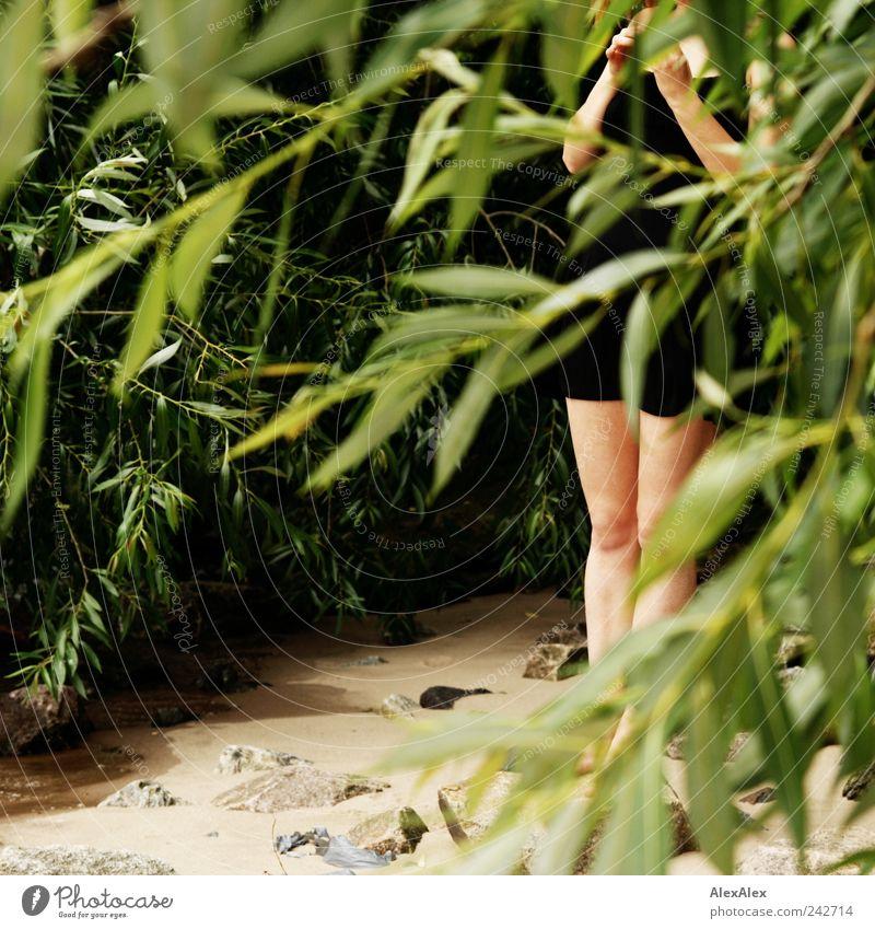... seh' Dich am Strand! feminin Junge Frau Jugendliche Beine 1 Mensch 18-30 Jahre Erwachsene Pflanze Sand Schönes Wetter Baum Sträucher Fluss Kleid beobachten