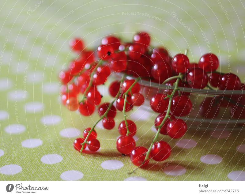 noch ein paar... weiß grün rot klein liegen Frucht Glas Ernährung natürlich Lebensmittel frisch ästhetisch Gesunde Ernährung rund einfach Punkt