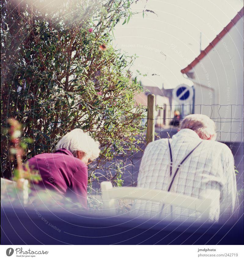 Großeltern Mensch Frau Mann alt Erholung Fenster Senior Garten Zusammensein Zufriedenheit Wohnung sitzen warten maskulin Häusliches Leben Vertrauen
