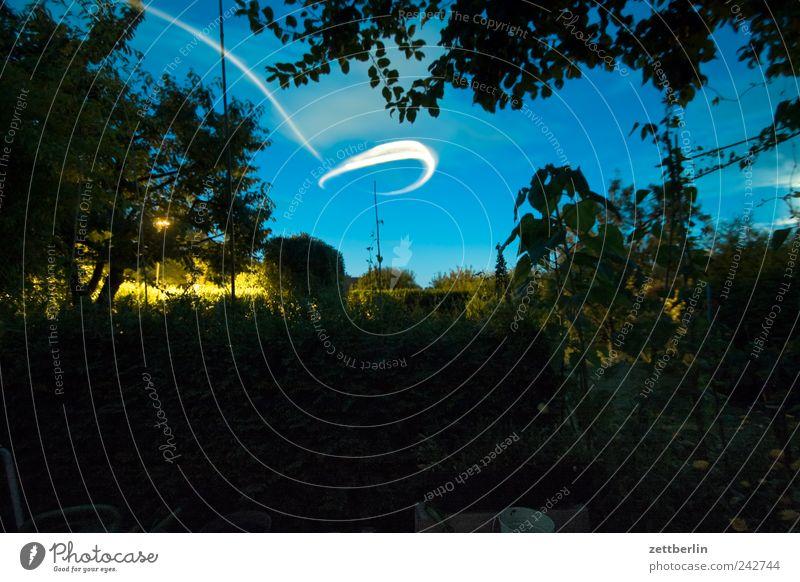 UFO im Gärtchen Erholung Freizeit & Hobby Spielen Häusliches Leben Wohnung Garten Natur Landschaft Pflanze Sommer Nordlicht Baum Blume Gras Sträucher Wachstum