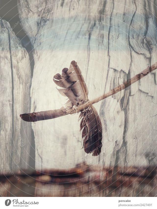 free me Urelemente Luft Wind Vogel ästhetisch frei natürlich retro blau braun Windrad Windfahne Feder Strandgut Holz Doppelbelichtung Natur Zeichen Indianer