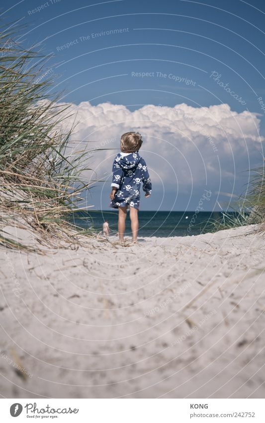 seeluft macht neugierig Mensch Kind Sommer Strand Ferien & Urlaub & Reisen Wolken Ferne Junge Glück Zufriedenheit Küste warten beobachten Kindheit entdecken