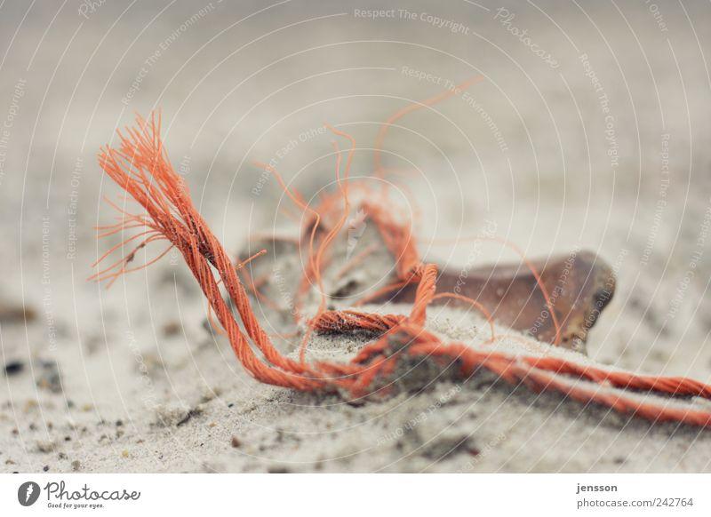 da biss die Maus doch den Faden ab Natur alt Strand Sand orange Umwelt Seil kaputt liegen Müll Schnur durcheinander finden Umweltverschmutzung Rest verdreht