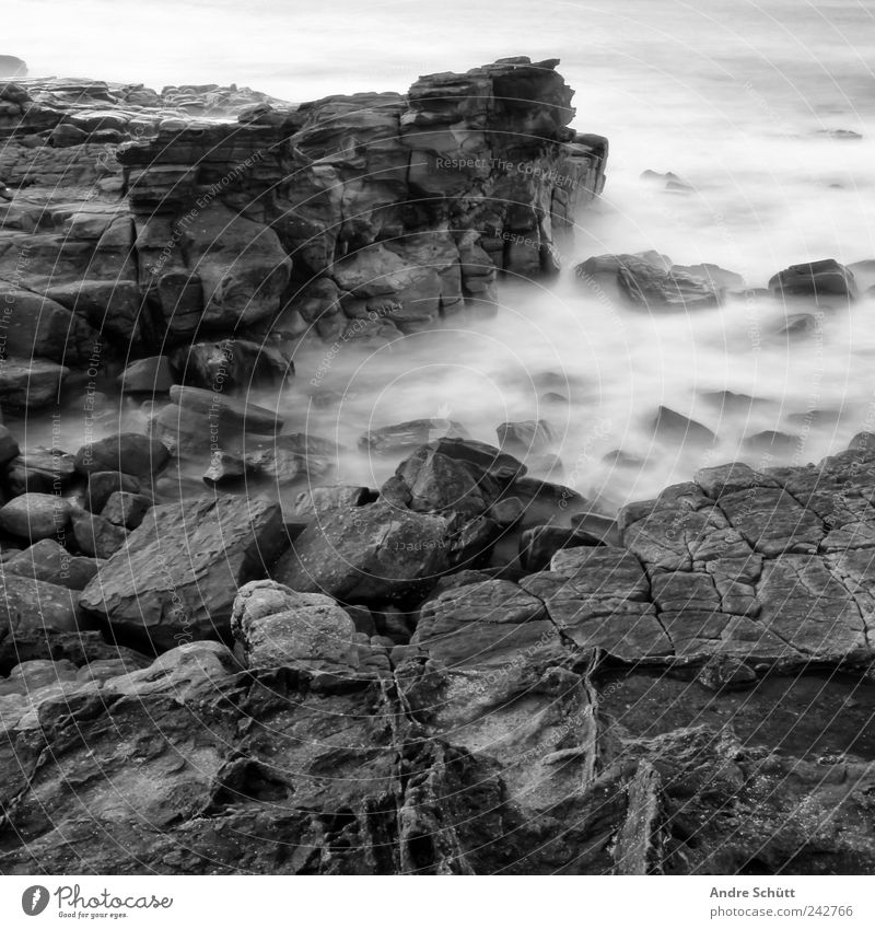 on the rocks (3) Umwelt Urelemente Erde Wasser Felsen Wellen Küste außergewöhnlich bedrohlich nass stark Australien Langzeitbelichtung steinig Schwarzweißfoto