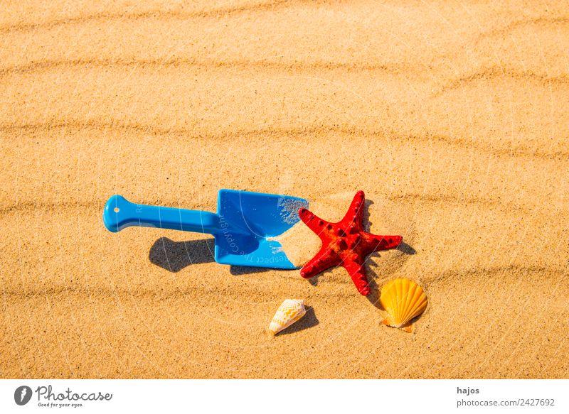 Schaufel und Seestern am Strand Freude Erholung Ferien & Urlaub & Reisen Sommer Kind Sand Ostsee gelb Tourismus Kinderspiel Spielzeug rot Schnecken Muscheln
