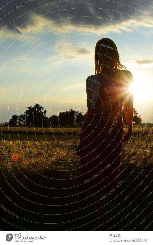 Sonnenlicht Mensch feminin Junge Frau Jugendliche 1 18-30 Jahre Erwachsene Natur Landschaft Himmel Wolken Sommer Schönes Wetter Baum Feld Kleid Haare & Frisuren