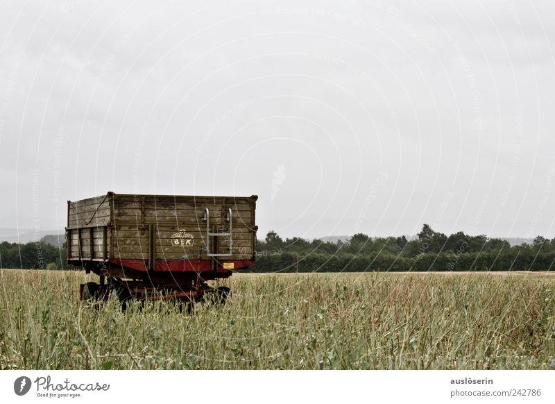 lonely wagon Natur Himmel grün Pflanze Wolken Einsamkeit Ferne dunkel Gefühle grau Regen Landschaft braun Feld Wetter Umwelt