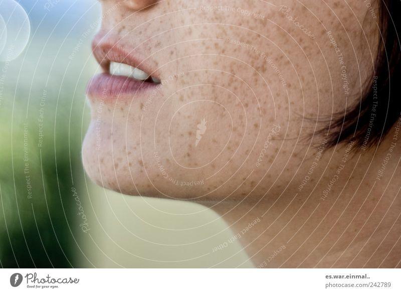 hochsommer im gesicht. Erholung feminin träumen Zufriedenheit Mund natürlich Lippen Warmherzigkeit Duft genießen harmonisch Sommersprossen Mensch