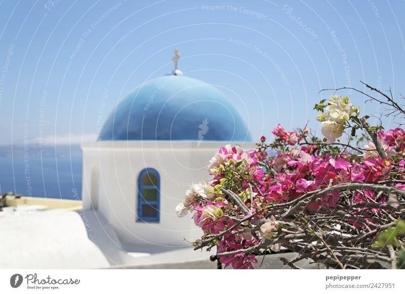 Santorini Ferien & Urlaub & Reisen Tourismus Ausflug Städtereise Sommer Häusliches Leben Haus Himmel Blüte Küste Griechenland Kleinstadt Kirche Bauwerk Gebäude