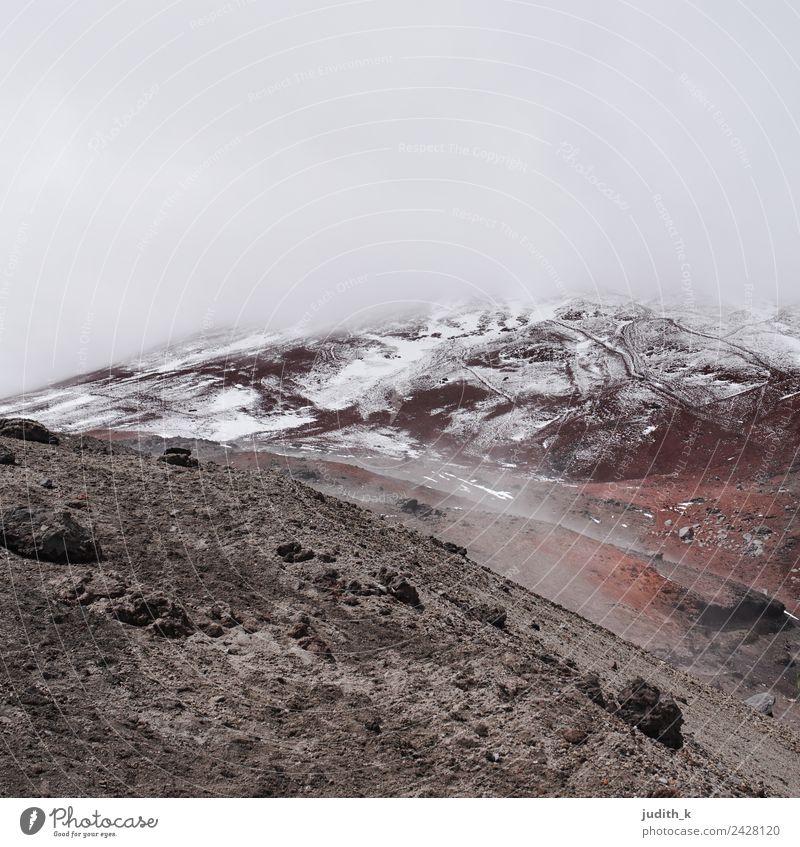Cotopaxi Umwelt Natur Landschaft Urelemente Erde Wolken Sturm Nebel Schnee Dürre Felsen Berge u. Gebirge Schneebedeckte Gipfel Gletscher Vulkan Schlucht Ecuador