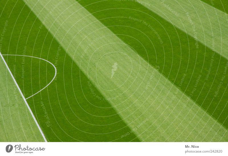 \\\\\ grün Wiese Sport Gras Linie frisch Streifen gestreift Sportveranstaltung Geometrie saftig Stadion Fußballplatz Weltmeisterschaft Arena Ballsport