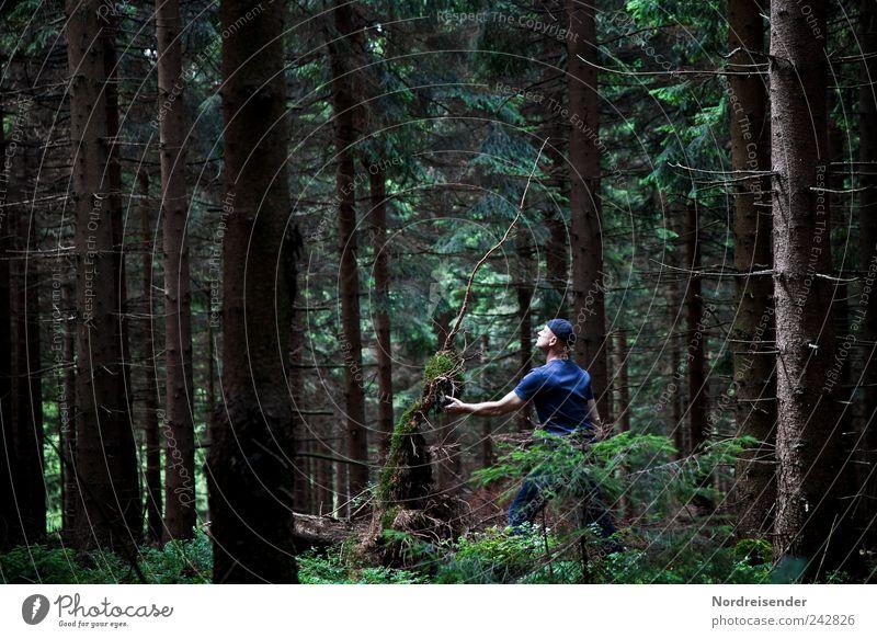 Kontakt Lifestyle Sinnesorgane Meditation Mann Erwachsene 1 Mensch Natur Pflanze Sommer Baum Wald T-Shirt Mütze beobachten berühren außergewöhnlich dunkel