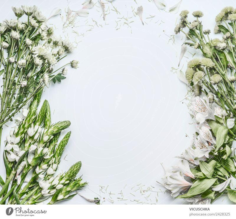 Grün weißen Blumen auf weiße Hintergrund kaufen Design Feste & Feiern Muttertag Hochzeit Geburtstag Business Natur Pflanze Dekoration & Verzierung Blumenstrauß