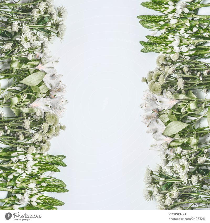 Blumen Rahmen auf weißem Hintergrund Stil Design Sommer Valentinstag Natur Pflanze Blatt Blüte Dekoration & Verzierung Blumenstrauß Ornament Liebe rosa Entwurf