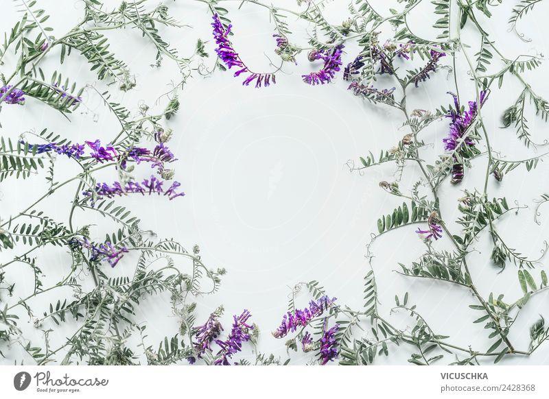 Wild Blumen Rahmen Stil Design Sommer Dekoration & Verzierung Feste & Feiern Natur Pflanze Blumenstrauß rosa Hintergrundbild arrangiert Symbole & Metaphern