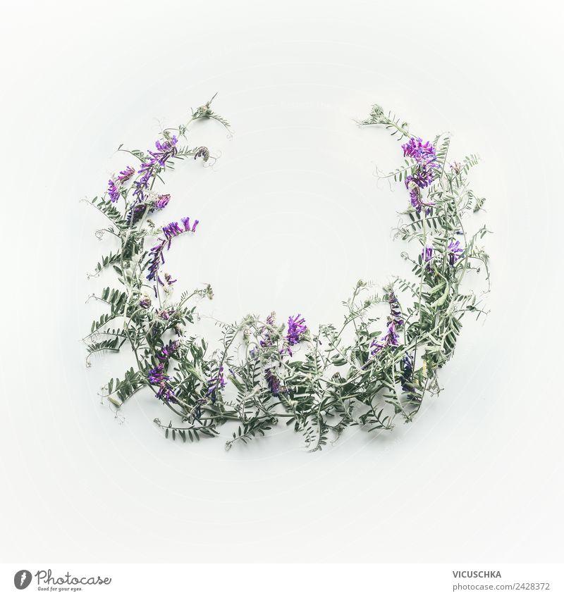 Kranz aus wilden lila Blumen Stil Design Sommer Natur Pflanze Blatt Blüte Dekoration & Verzierung Blumenstrauß Hintergrundbild Rahmen Vor hellem Hintergrund