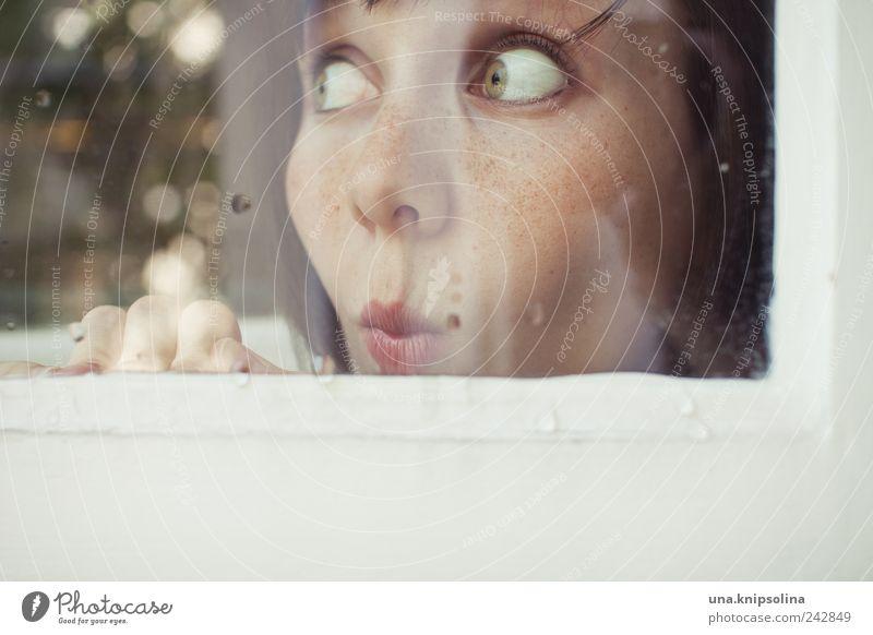 hui Frau Mensch Jugendliche Auge feminin Fenster Holz lustig Erwachsene Glas Tür Wassertropfen beobachten berühren Neugier entdecken