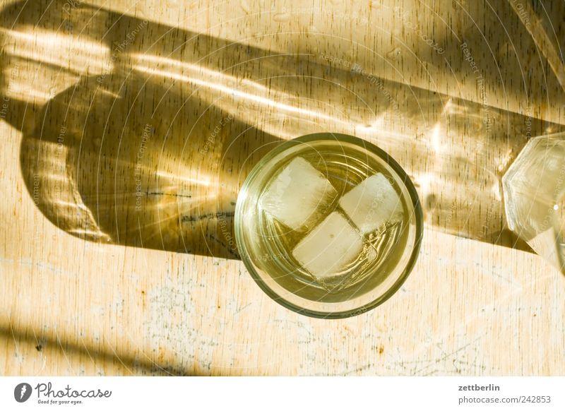 Martini Alkohol Spirituosen Glas Erholung Freizeit & Hobby Häusliches Leben Garten Feste & Feiern Natur Pflanze Baum trinken Wachstum Schrebergarten Eiswürfel
