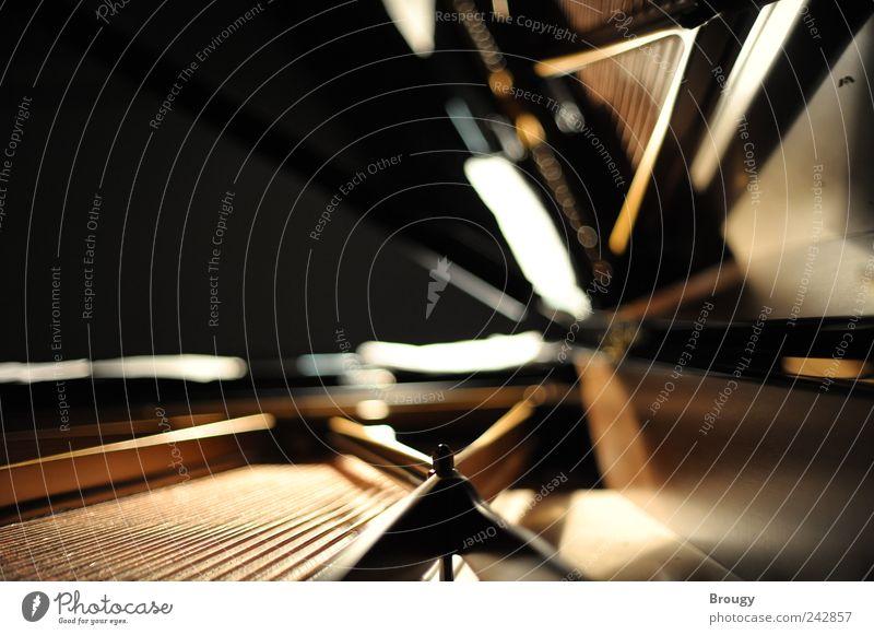 Steinway & Sons Musik Stimmung Kraft elegant gold außergewöhnlich Warmherzigkeit Konzert Klavier Flügel Künstler Charakter Musiker Saite Orchester Mechanik