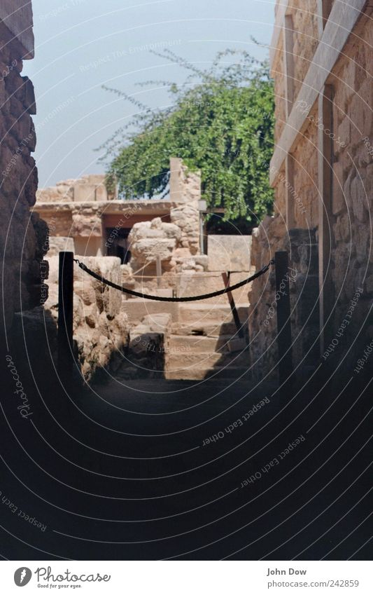 Knossos alt Wand Mauer Ausflug Fassade Treppe Sträucher Vergangenheit historisch Ruine Museum Schüchternheit Antike Weltkulturerbe Mythologie