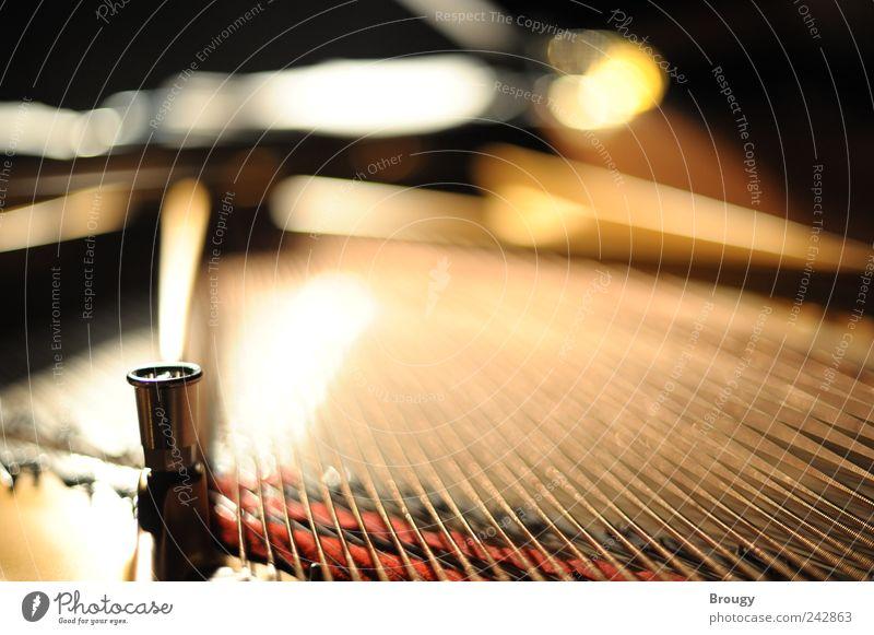 Steinway & Sons schön Gefühle Traurigkeit Stimmung Kraft Kunst elegant gold Perspektive ästhetisch außergewöhnlich Konzert Leidenschaft Reichtum Klavier silber