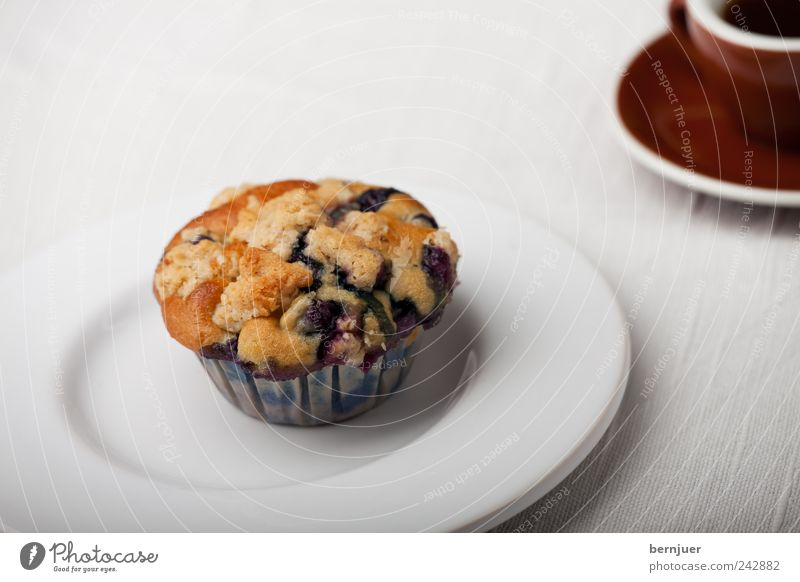 Autonomiebestreben Lebensmittel Teigwaren Backwaren Frühstück Kaffee Teller Tasse Billig klein braun weiß Muffin Einsamkeit 1 Espresso Snack Blaubeeren