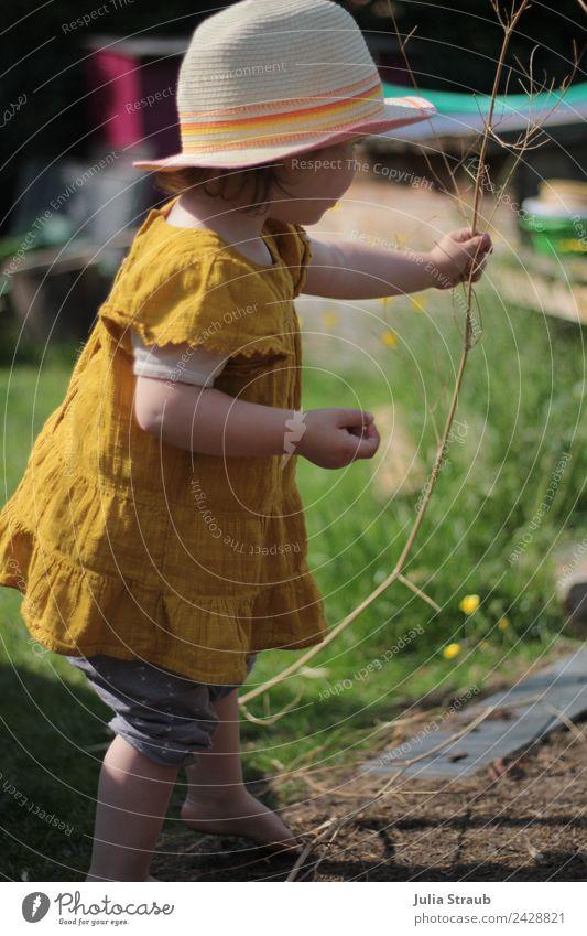 Mädchen Kleinkind Sonnenhut Kleid Garten Ast Barfuss Mensch Natur Ferien & Urlaub & Reisen Sommer Pflanze schön grün Blume Wärme gelb Wiese feminin