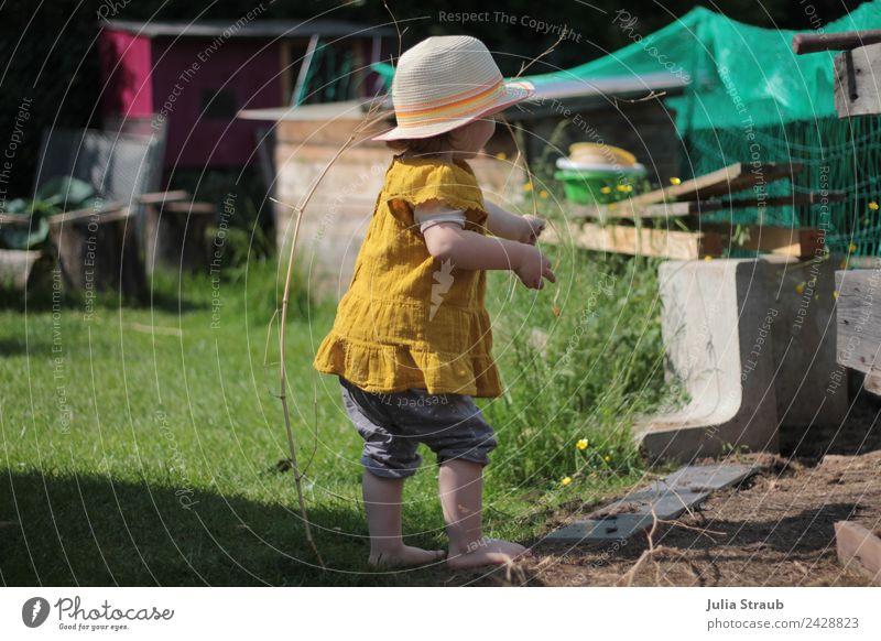 Garten Öko Kleinkind grün hut Mensch Natur Sommer Freude Mädchen natürlich feminin Gras Zufriedenheit stehen authentisch Schönes Wetter beobachten