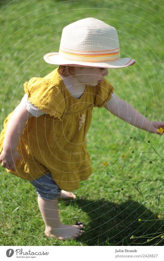 Mädchen Kleinkind Hut Garten Barfuss Mensch Natur Sommer schön grün gelb Wiese feminin Zeit Zufriedenheit Schönes Wetter berühren entdecken Kleid Hose