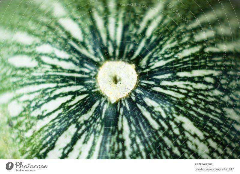 Zucchini Lebensmittel Gemüse Salat Salatbeilage Frucht Ernährung Bioprodukte Vegetarische Ernährung Erholung Garten Natur Pflanze Baum Wachstum Schrebergarten
