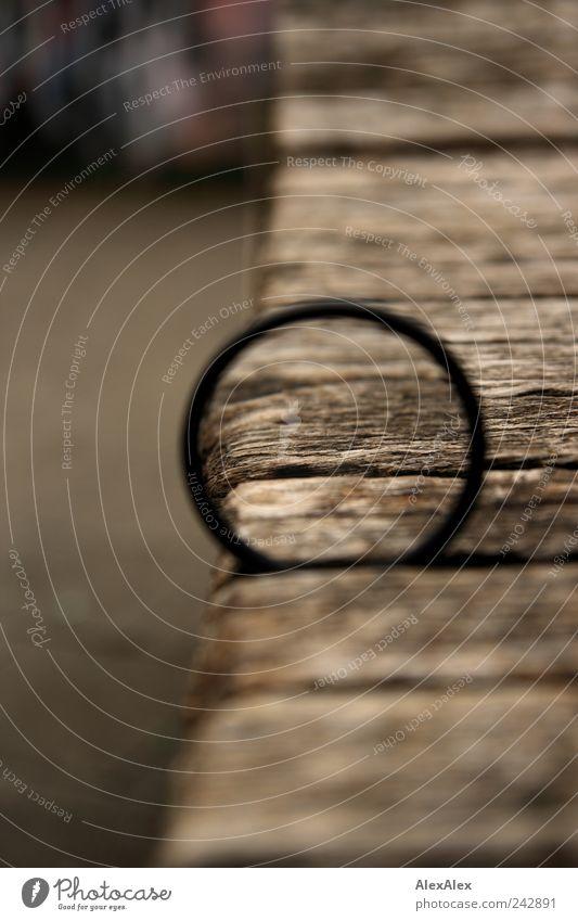 Linsengesicht Holz fest skurril Holzbrett Schneidebrett Präzision Brennpunkt losgelöst Zoomeffekt vergrößert stecken