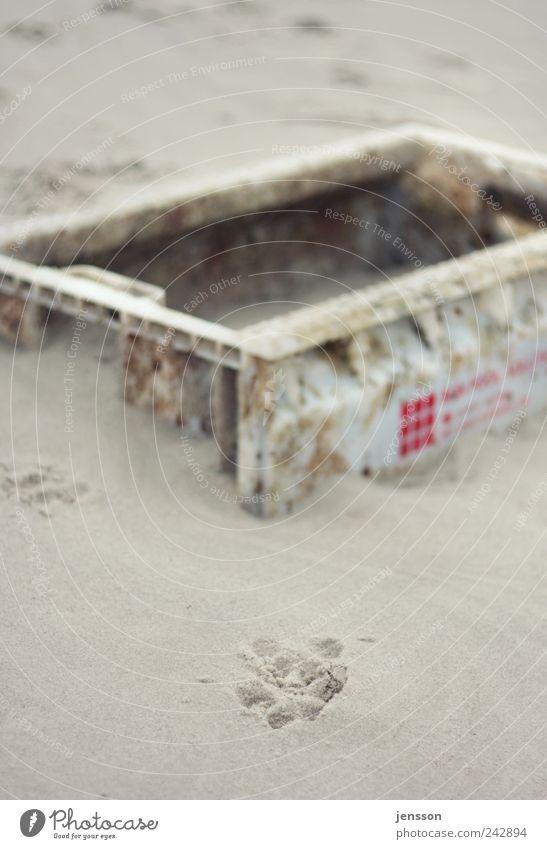 In die Kiste gesprungen? Umwelt Natur Sand Küste Strand Fährte Kasten alt dreckig kaputt Gefühle Strandgut Fundstück Abdruck Spuren Farbfoto Gedeckte Farben