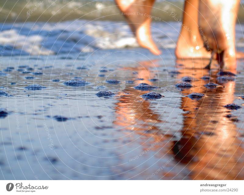 Strandperspektive2 Meer Reflexion & Spiegelung Ferien & Urlaub & Reisen Stil Lifestyle Stimmung Perspektive Mensch Wasser Fuß Andreas Gregor Anschnitt