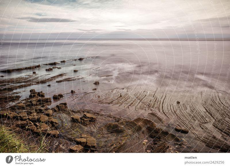 Ebbe Natur Landschaft Luft Wasser Himmel Wolken Horizont Sommer Schönes Wetter Gras Felsen Küste Strand Meer maritim braun grau grün violett Flysch Farbfoto