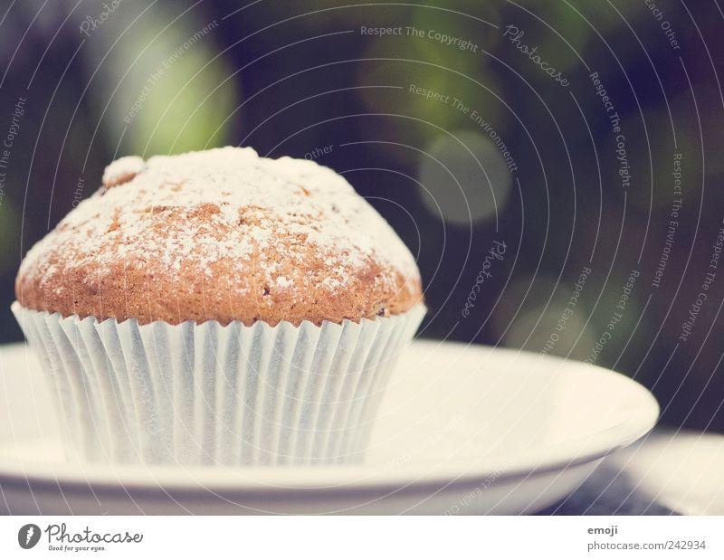 Muffin, gepudert Teigwaren Backwaren Dessert Süßwaren Fingerfood lecker ungesund Teller Tellerrand Puderzucker Farbfoto Außenaufnahme Hintergrund neutral