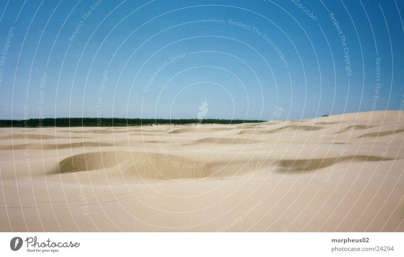 Wüste III Strand Wald Sand Wüste Stranddüne
