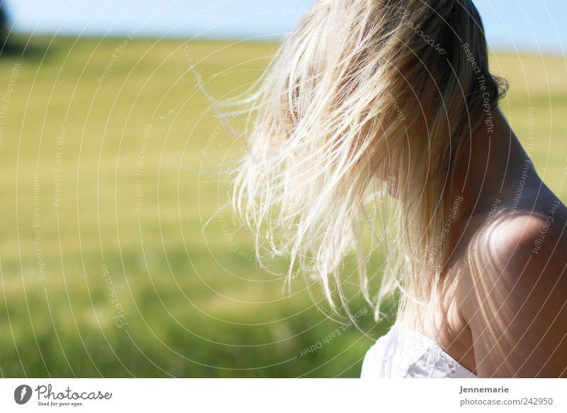 Federblond Mensch Natur Jugendliche schön Sommer feminin Glück träumen Haare & Frisuren Kopf Landschaft Luft Feld Haut blond Erwachsene