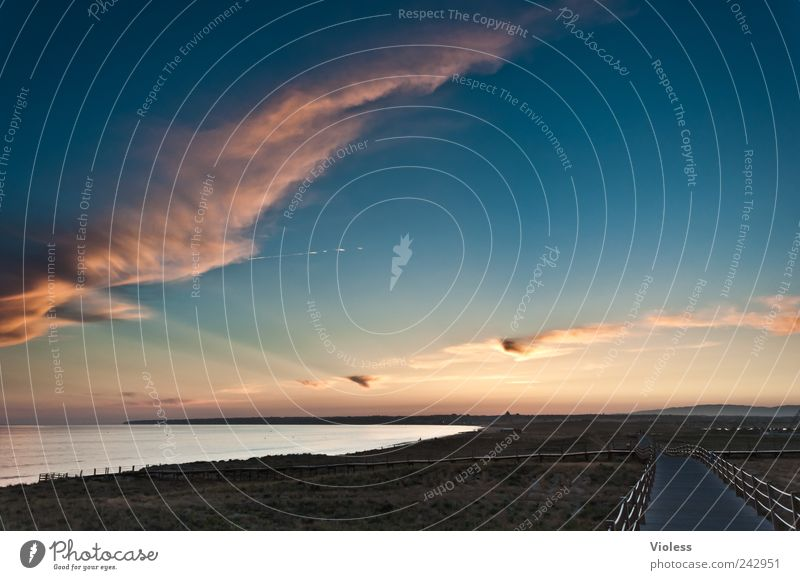 orange way Natur Himmel Meer Strand Erholung Landschaft genießen Portugal Algarve Wolkenfetzen