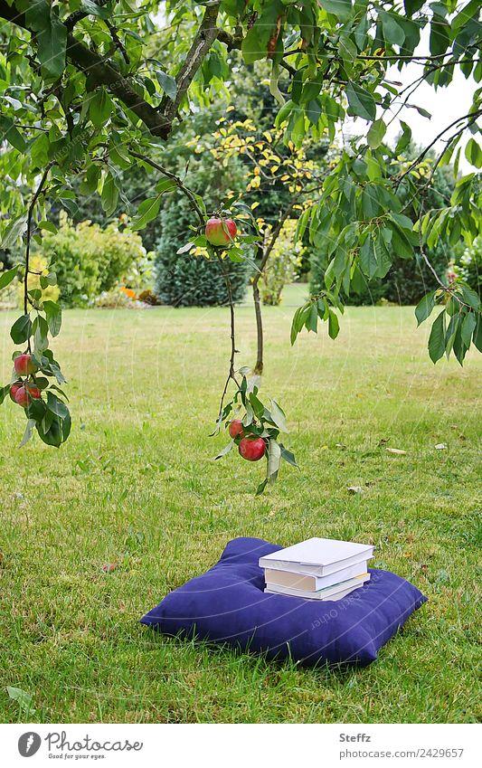 Urlaub Natur Ferien & Urlaub & Reisen Sommer grün Erholung ruhig Gras Garten Zufriedenheit Freizeit & Hobby genießen lesen Rasen Sommerurlaub Gelassenheit Zweig