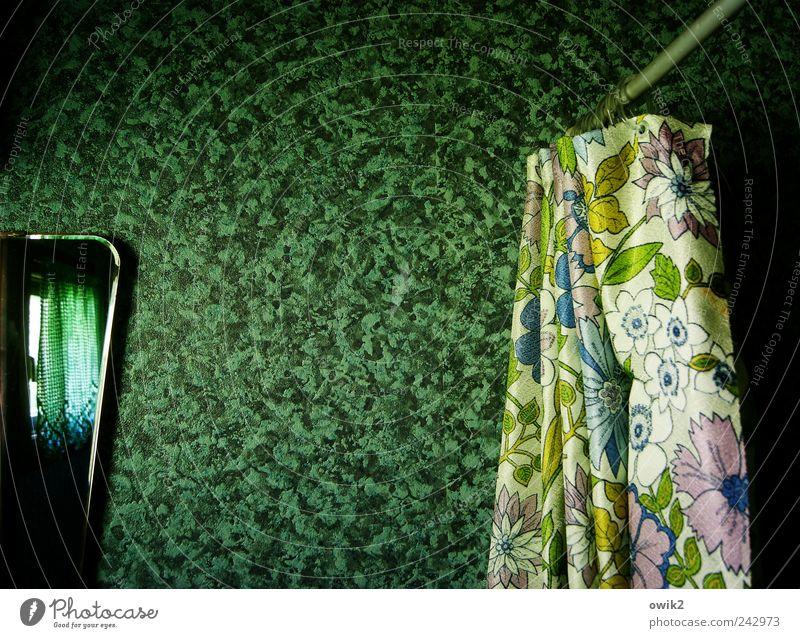 Schöner Duschen grün Wand Mauer Glas elegant Design Ordnung ästhetisch verrückt Häusliches Leben retro einzigartig Bad Dekoration & Verzierung außergewöhnlich Sauberkeit