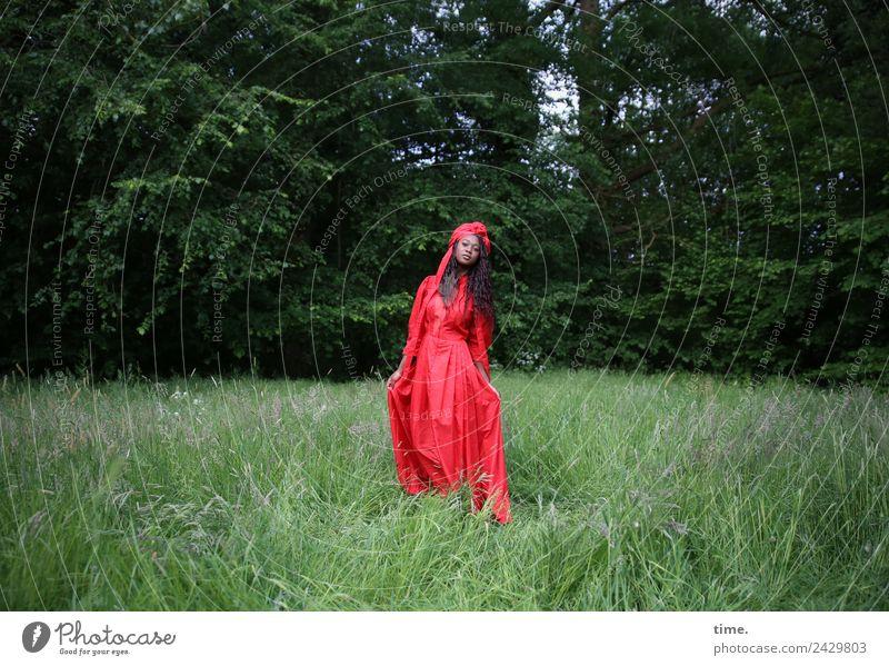 Romancia Frau Mensch schön grün rot Wald Erwachsene Wiese feminin Zeit gehen Park ästhetisch stehen Schönes Wetter beobachten