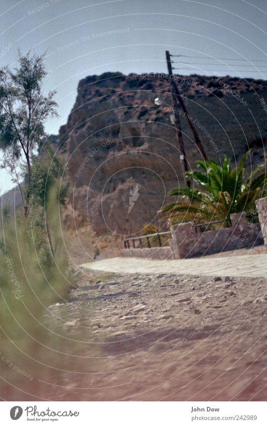 Schräglage Baum Sommer Ferien & Urlaub & Reisen Strand Ferne Wärme Wege & Pfade Felsen Ausflug Sträucher Hügel Warmherzigkeit Idylle Palme Strommast Fernweh